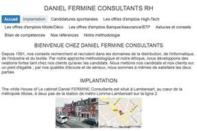 daniel fermine consultants cabinets de recrutement executive search. Black Bedroom Furniture Sets. Home Design Ideas