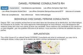 DANIEL FERMINE CONSULTANTS